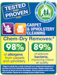 Upholstery Tampa Fl Upholstery Cleaning Tampa Fl Champion Chem Dry