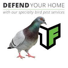 truforce pest control powerful home u0026 commercial defense