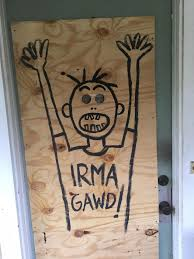 wmnf are you eligible for irma disaster funds from fema wmnf