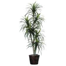 artificial plants for office artificial plants for office uk how