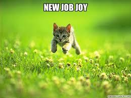 New Job Meme - job