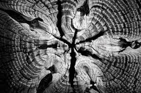creative pattern photography art abstract photography