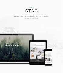 wordpress templates for websites stag portfolio theme for freelancers and agencies by deliciousthemes