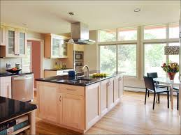 Contemporary Kitchen Cabinet Doors Kitchen Room Fabulous Contemporary Kitchen Design Australia