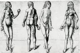 albrecht dürer the human figure