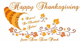 thanksgiving turkey animations happy thanksgiving gif images pictures u0026 wallpapers collection