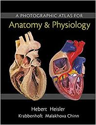 A Anatomy A Photographic Atlas For Anatomy U0026 Physiology 9780321869258