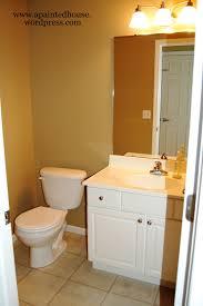 half bath half bath a painted house