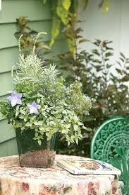 Potted Herb Garden Ideas Herb Garden Containers Herbs And Flowers In Pots Herb Garden