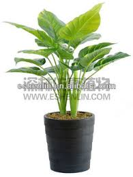 Small Desk Plants by Desk Top Small Tropical Artificial Bonsai Plants For Indoor