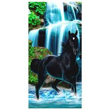 serviette de toilette bio serviette de bain cheval achat vente serviette de bain cheval