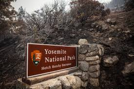 Wildfire Yosemite 2013 by Plague Case Investigated In California Time Com