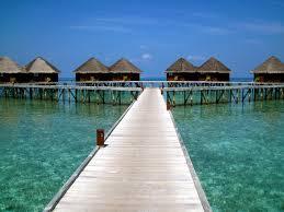 overwater bungalows reeftraveler