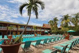beachfront wakulla two bedroom suites overview wakulla suites in cocoa beach florida westgate resorts