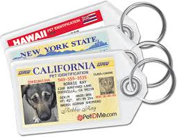 driver s license pet tags for your petidme