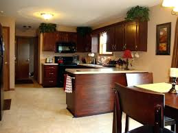 finishing kitchen cabinets ideas gel stain kitchen cabinet modern kitchen decoration with cabinets