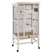 uccelli in gabbia voliera gabbia uccelli grande ferplast wilma legno canarini