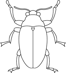 Bug Template insect template search learn to draw and paint