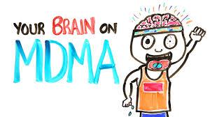 your brain on mdma youtube