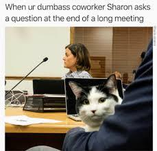 Coworker Meme - coworker meme tumblr