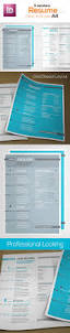 Resume Indesign Template Pro Looking Resume Swiss Grid By Tilougarou Graphicriver