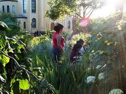 family garden brooklyn 40 secret gardens parks and green spaces hidden across nyc