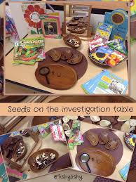 Periodic Table Project Ideas The 25 Best Science Table Ideas On Pinterest Science Center