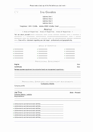 free professional resume format professional resume format doc luxury free fill in the