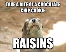 Raisins Meme - livememe com dissatisfied seal