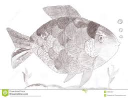 sketch drawing of a fish stock illustration image 49833957
