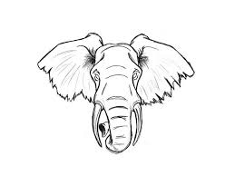 16 best elephant and star tattoo images on pinterest baby