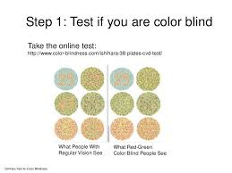 Color Blind Design Making Colors Visible For All