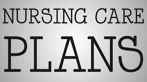 nursing nursing care plan example youtube