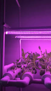 12v dc led grow lights all pc tube 16w greenhouse led grow light 12v dc buy led grow