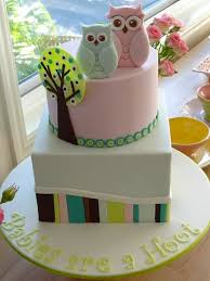 31 best baby shower cakes images on pinterest baby shower cakes