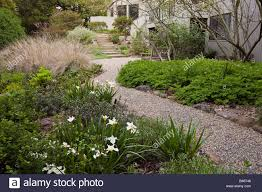 native plant garden gravel path leading to patio in drought tolerant california native