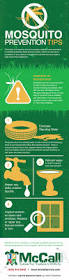 mosquito prevention tips from the pest pros infographic