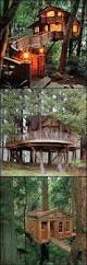 tree house guest room seriously want this to be in my future home