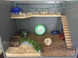 Hamster Cages Cheap Diy Dwarf Hamster Cage All Custom Made Christmas Lights Just