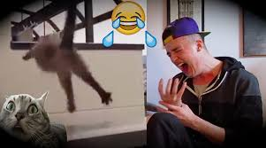 Challenge Reaction The Hardest Try Not To Laugh Challenge Reaction