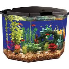 How To Make Fish Tank Decorations At Home Aqua Culture Aquarium Two Sided Background 1 Ct Walmart Com