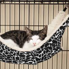 proselect wild time cage hammock cat bed black with same day