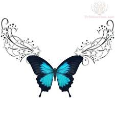 best 25 blue butterfly meaning ideas on butterfly