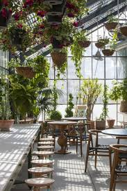 Hanging Plants For Patio Greenhouse Eating At The Line Hotel La Hanging Plant Natural