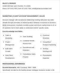 Sales Executive Resume Samples by B2b Sales Executive Resume Best Account Manager Resume Example