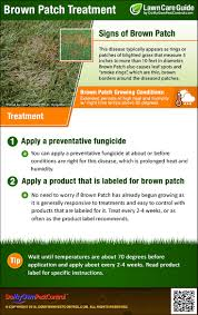 How To Get Rid Of Flies In The Backyard by Brown Patch Treatment How To Get Rid Of Brown Patch Fungus Disease