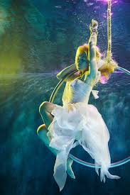 by harry fayt underwater harry fayt pinterest incredible work by belgium photographer harry fayt underwater