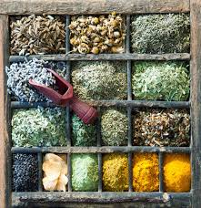 assorted culinary herbs and es stock image image of cooking diversity 33580749