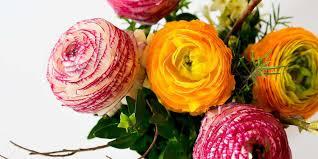 flower color meanings u0026 symbolism proflowers blog
