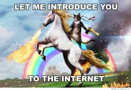 What Is Internet Meme - let me introduce you to the internet weknowmemes